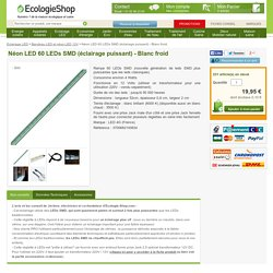Néon LED 60 LEDs SMD (éclairage puissant) - Blanc froid Bandeau LED et néon LED 12V