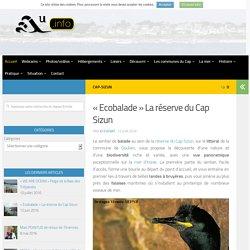 """""""Ecobalade"""" La réserve du Cap Sizun - AUDIERNE INFO"""