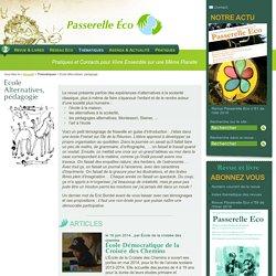 Ecole Alternatives, pédagogie