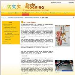 Ecole du Jogging - Le Psoas-iliaque