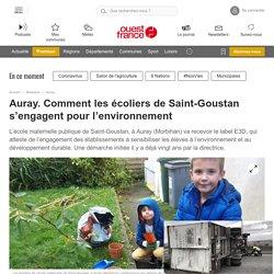 Auray. Comment les écoliers de Saint-Goustan s'engagent pour l'environnement