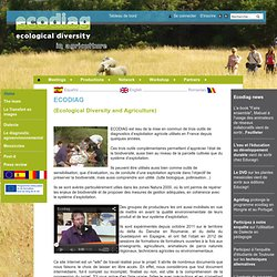 Ecological Diversity in Agriculture : Accueil