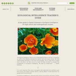 Ecological Intelligence Teacher's Guide
