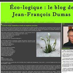 Jean François DUMAS