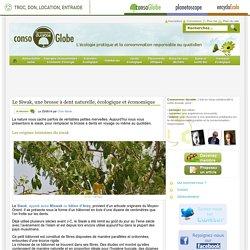 Le Siwak, une brosse à dent naturelle, écologique et économique Consommer Durable