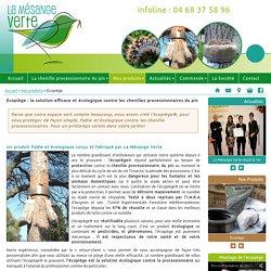 Écopiège : la solution efficace et écologique contre la chenille processionnaire du pin : La Mésange Verte