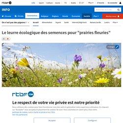"""Le leurre écologique des semences pour """"prairies fleuries"""""""