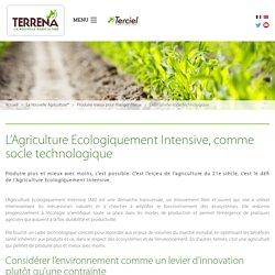 L'Agriculture Ecologiquement Intensive, comme socle technologique - Terrena