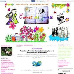 Recettes : Produits d'entretien écologiques & économiques faits maison - Carnet de yourte