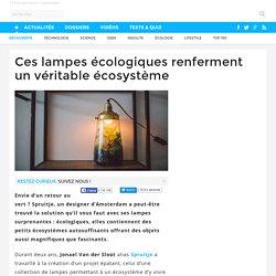Ces lampes écologiques renferment un véritable écosystème - 14/11/16
