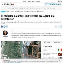 El manglar Tajamar, una victoria ecologista a la devastación