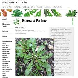Les Ecologistes de l'Euzière : BoursePasteur