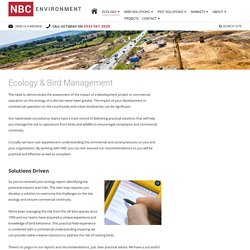 Ecology & Bird Management