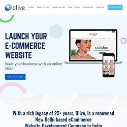 ECommerce Website Development Agency in Delhi