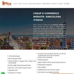 Magento ecommerce design and development in Barcelona