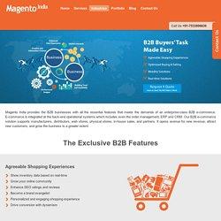 Magento B2B Websites