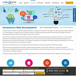 Custom eCommerce Web Development Services In Florida