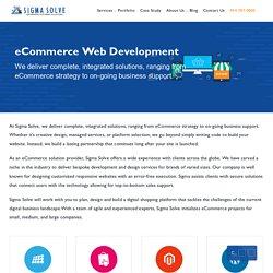 Ecommerce Development Solutions In Florida