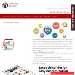 Ecommerce Website Maintenance services