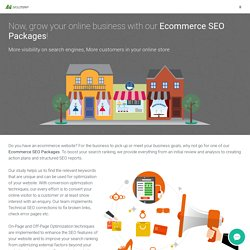 Best Ecommerce SEO packages and services for Ecommerce website