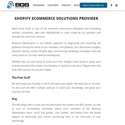 Marketing Strategy For Shopify Website