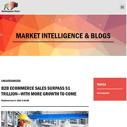B2B ecommerce sales surpass $1 trillion—with more growth to come - Marketplace Distri