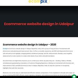 Ecommerce website design in Udaipur