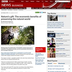 Nature's gift: The economic benefits of preserving the natural world