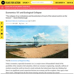 Economics 101 and Ecological Collapse