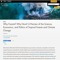 Why Forests? Why Now? A Preview of the Science, Economics, and Politics of Tropical Forests and Climate Change