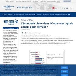 L'économie bleue dans l'Outre-mer : quels enjeux pour demain ?