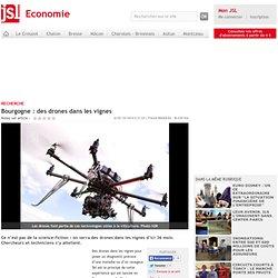 Bourgogne : des drones dans les vignes