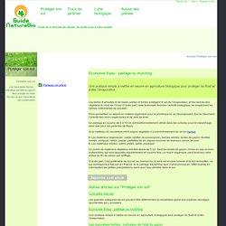 Economie d'eau : paillage ou mulching - Connaître son sol - Jardin bio écologique, Conseils jardin