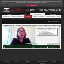ASSEMBLEE NATIONALE 13/01/21 Audition : Commission des affaires économiques : rapport sur les sels nitrités ; rendu du groupe de suivi des conséquences économiques du confinement