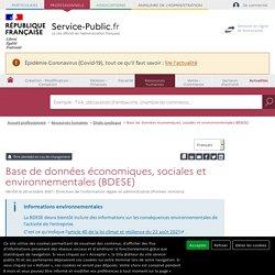Base de données économiques et sociales (BDES) - professionnels