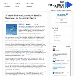 What is the Blue Economy?: Healthy Oceans as an Economic Driver