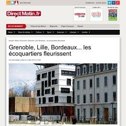 Grenoble, Lille, Bordeaux... les écoquartiers fleurissent