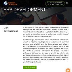 ERP Solution Provider in Noida