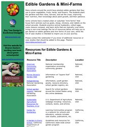 EcoSchool Design: Edible Gardens and Mini-Farms