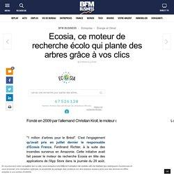 Ecosia, ce moteur de recherche écolo qui plante des arbres grâce à vos clics