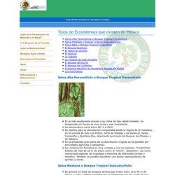 Tipos de Ecosistemas que existen en México