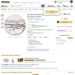 EcoSphere Closed Aquatic Ecosystem, Small Sphere: Pet Supplies