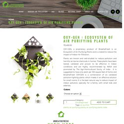 OXY-GEN : Ecosystem of Air Purifying Plants in India - BreatheFresh