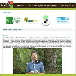 UVED - Services Ecosystémiques et processus écologiques des sols