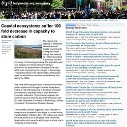 Coastal ecosystems suffer 100 fold decrease in capacity to store carbon