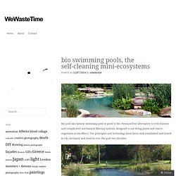 bio swimming pools, the self-cleaning mini-ecosystems | WeWasteTime