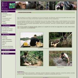 HELP CONGO - Séjour écovolontaire. Devenir bénévole au Congo
