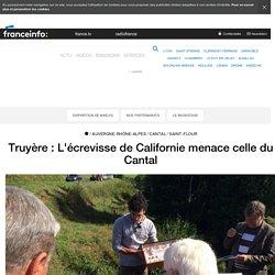FRANCE 3 28/07/17 Truyère : L'écrevisse de Californie menace celle du Cantal