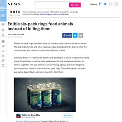 Edible six-pack rings feed animals instead of killing them - AOL