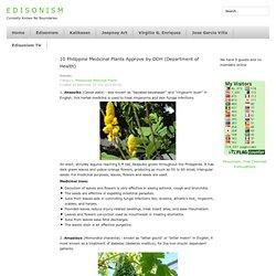 Edisonism.com